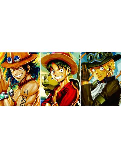 Cadre One Piece 3D