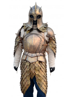 Armure Game of Thrones