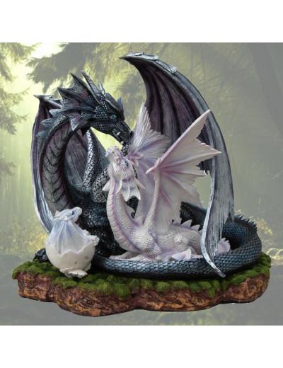 Couple de Dragons Noir et Blanc
